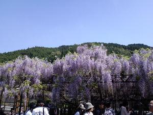 201105D03.jpg